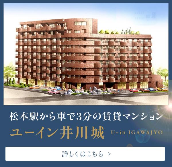 ユーイン井川城の詳しいご案内はこちら